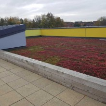 Oasis Academy| Sothall Roofing Specialists Ltd